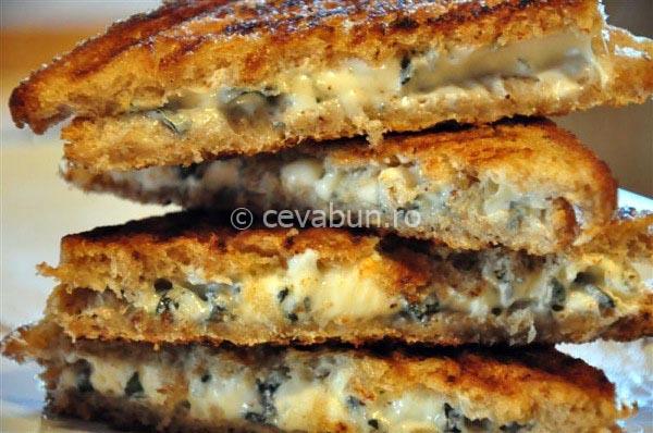 Articole culinare : Toast de brânză cu mucegai şi dulceaţă de vişine