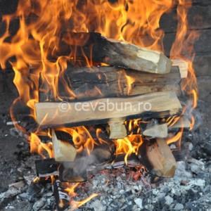 Aprindeţi focul cu lemn de esenţă tare