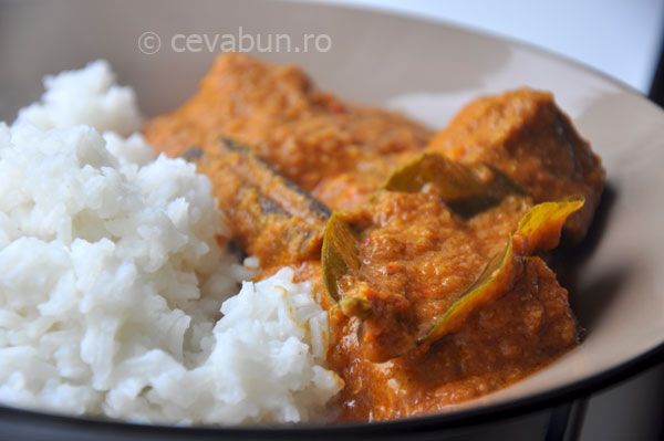 curry-indian-miel_II