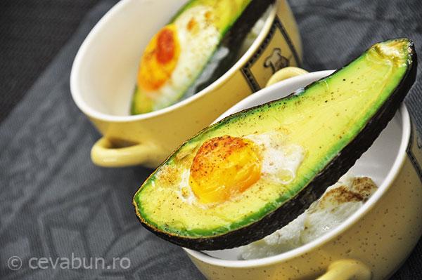 avocado-copt