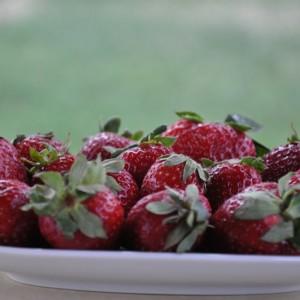 Spumă de căpșuni